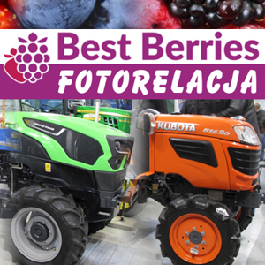 Fotorelacja Best Berries 2018